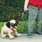 Boogie – Psi Rozrabiaka - boogie-psi-rozrabiaka-mops-zabawa - miniaturka