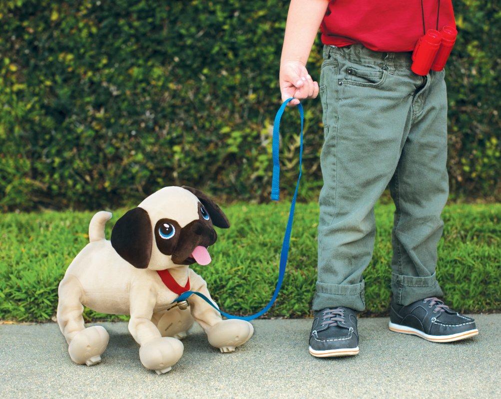 Boogie – Psi Rozrabiaka - boogie-psi-rozrabiaka-mops-zabawa