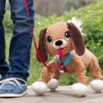 Boogie – Psi Rozrabiaka - ep02608_2 - miniaturka